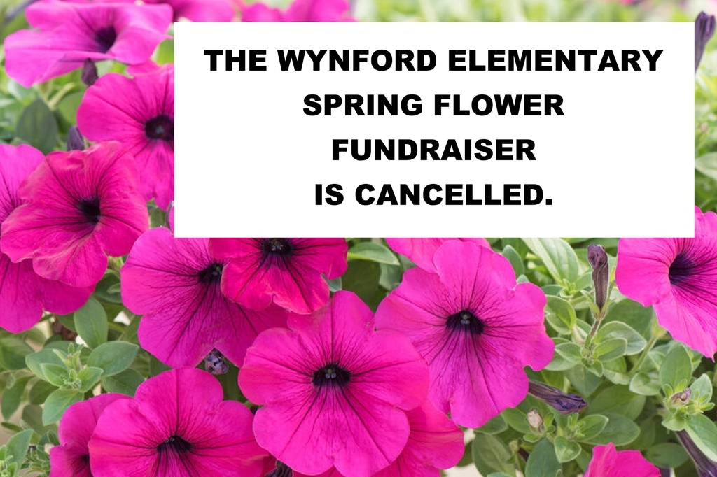 Flower Fundraiser Cancelled
